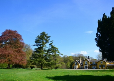 Martinstown House